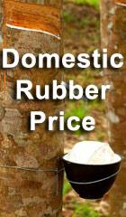 Domestic Rubber Price
